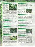 Jatropha - Tamil Nadu Agricultural University - Page 2