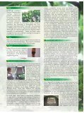 Jatropha - Tamil Nadu Agricultural University - Page 3