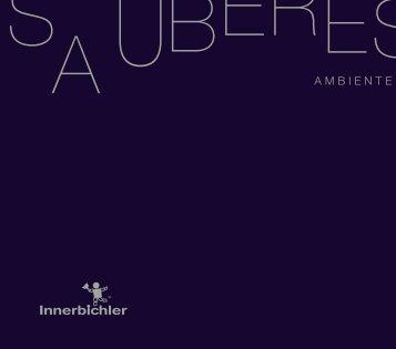 AMbIENTE - Innerbichler