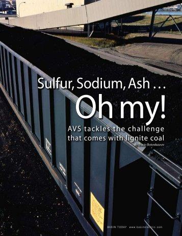 Sulfur, Sodium, Ash …