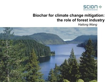 Biochar for climate change mitigation: the role of forest industry