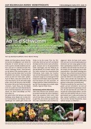 Ab in d'Schwümm - Birseck Magazin