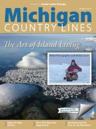 Great Lakes - Michigan Country Lines Magazine
