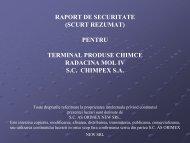 Prezentare RS terminal produse chimice - Petrescu Traian - Expert ...