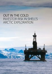 out in the cold: investor risk in shell's arctic exploration - FairPensions