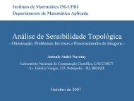 A derivada topológica. Aplicações à otimização, problemas inversos ...
