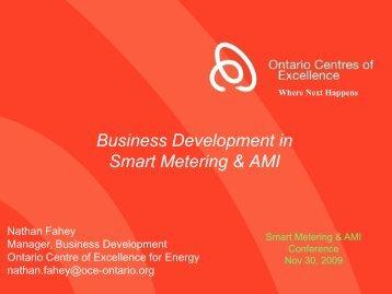 Business Development in Smart Metering & AMI - Energy Studies ...