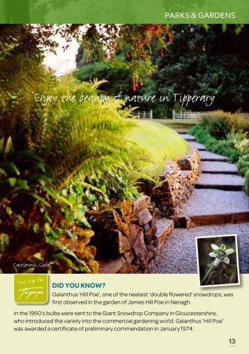 Gardens - Tipperary