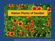 Native Plants of Sanibel - Mysanibel.us