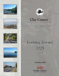 Issue Analysis - Clay County!
