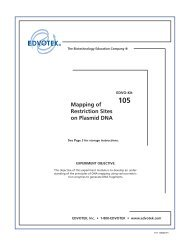 105 Mapping of Restriction Sites on Plasmid DNA - EDVOTEK