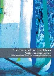 Plaquette de présentation du CESB Gestion de patrimoine - CFPB