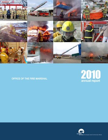 2010 Annual Report - Department of Municipal and Community ...