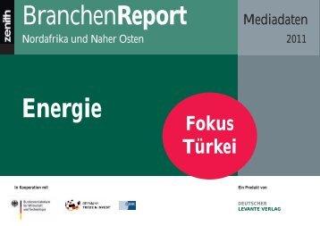Energie BranchenReport - Zenith