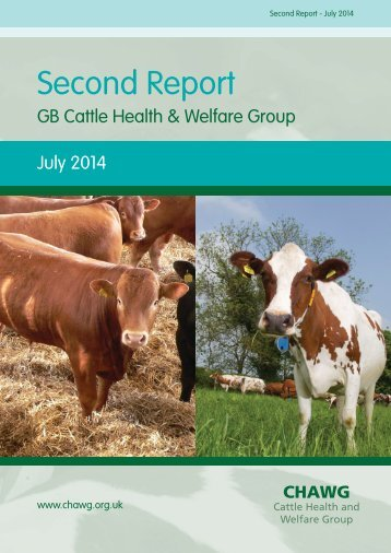 CHAWG-Annual-Report-2014