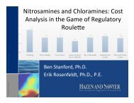 Nitrosamines and Chloramines: Cost Analysis in the Game of ...