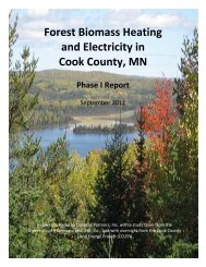 Forest Biomass Heating and Electricity in Cook County, MN Phase I ...
