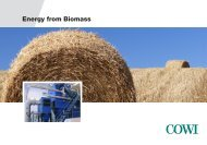 Energy from Biomass - Cowi