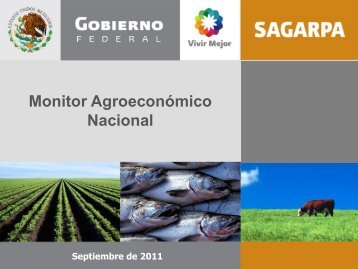 MonitorAgroeconómico(sept11) - Financiera Rural