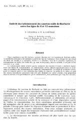 PDF file (322.9 KB)