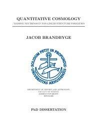 P - Institut for Fysik og Astronomi