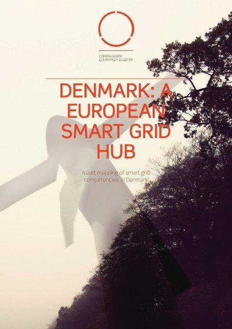 denmark: a european smart grid hub - Copenhagen Cleantech Cluster