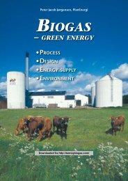 Biogas – Green Energy Process, Design, Energy ... - EAC QUALITY