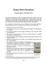 Progress Report: December 2010 - CNAS