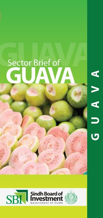 Sector brief Guava - Sindh Board Of Investment, Government Of Sindh
