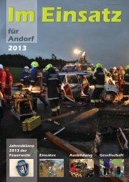 Jahresbericht-2013 - Webdata.at