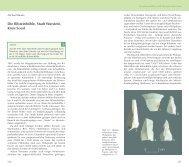 pdf: Baales 2006 – Bilsteinhöhle