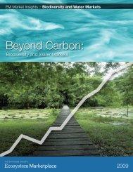 Beyond Carbon: - the Katoomba Group