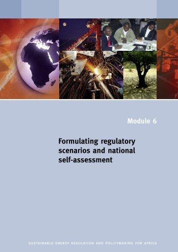 Formulating regulatory scenarios and national self-assessment - unido