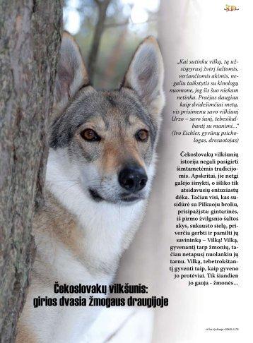 Čekoslovakų vilkšunis: girios dvasia žmogaus draugijoje