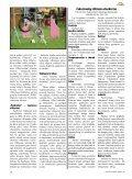 Čekoslovakų vilkšunis: girios dvasia žmogaus draugijoje - Page 5