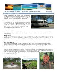 island discovery tour raro tours - Island Hopper Vacations