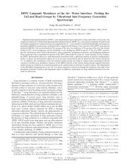 DPPC Langmuir Monolayer at the Air-Water Interface ... - Chemistry