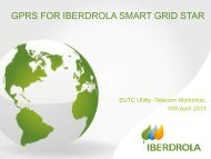 4. GPRS for Iberdrola Smart Grid Star