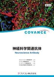 その他の神経科学関連抗体 - フナコシ