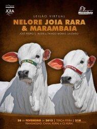 NeLore JoiA rArA & MArAMBAiA - Canal Rural