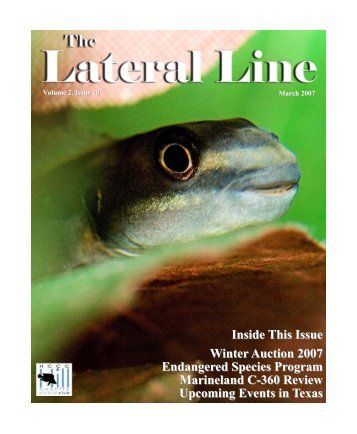 Lateral Line March 2007.pub - Hill Country Cichlid Club