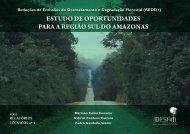 estudo de oportunidades para a região sul do amazonas