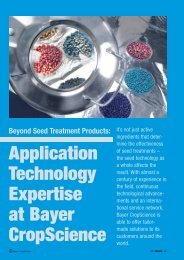 Download: ( 393 KB pdf) - Bayer CropScience Mexico