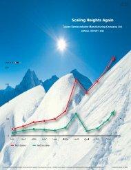 2003 Annual Report - TSMC