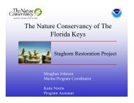The Nature Conservancy of The Florida Keys - The Florida Reef ...