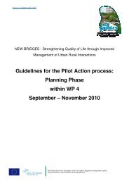 Guidelines for the Pilot Action process: Planning ... - New Bridges