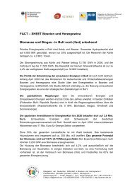 Factsheet Bioenergie 2009 BuH - Eclareon
