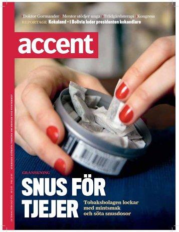 Accent 5/07 (PDF)