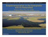Evapotranspiration in the Everglades and its Watershed