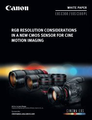 White Paper Rgb Resolution Considerations In A New Cmos Sensor